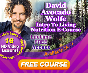 David Avocado Wolfe FREE E-Course - 300x250-2
