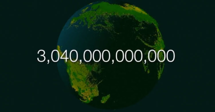 how-many-trees-on-planet