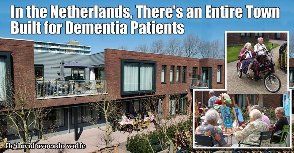 netherlands dementia