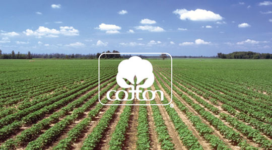 955_cotton-sustainability-ad