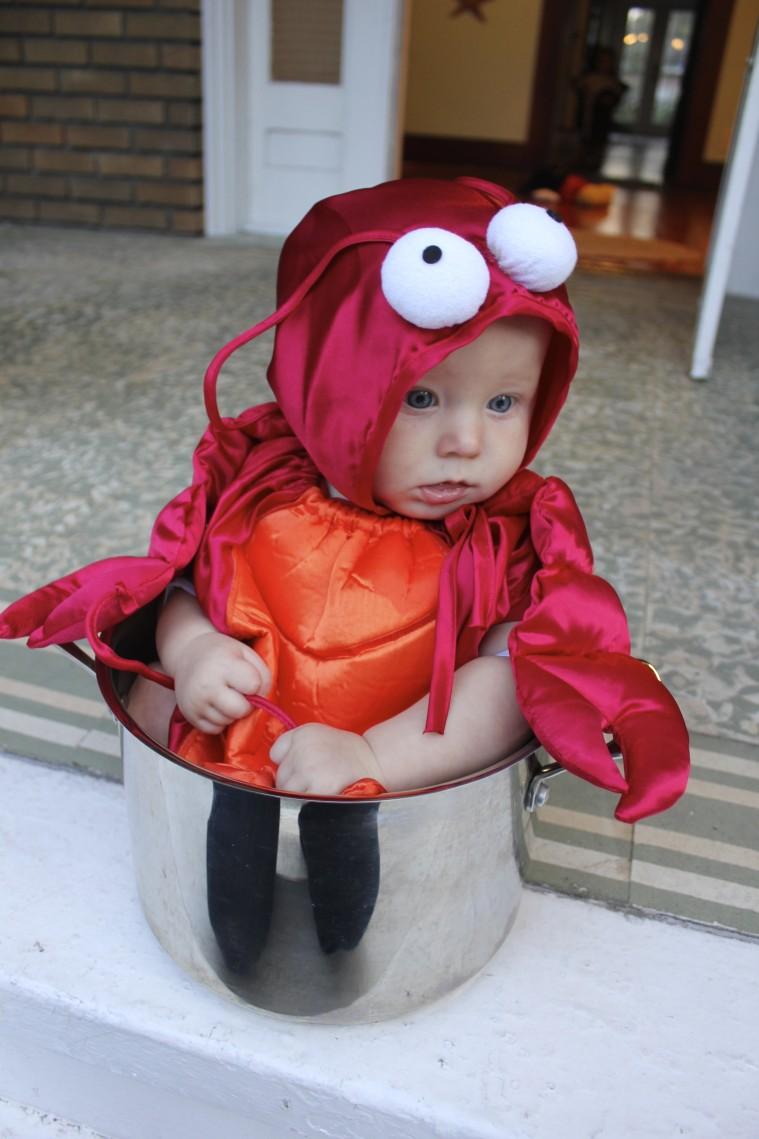 20 Halloween Costumes Only a Baby Could Wear....#20 is Genius ...