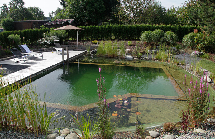 Natural Looking In Ground Pools. Natural Swimming Pools Designrulz 013  Natural
