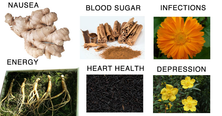 herbs-heal-body