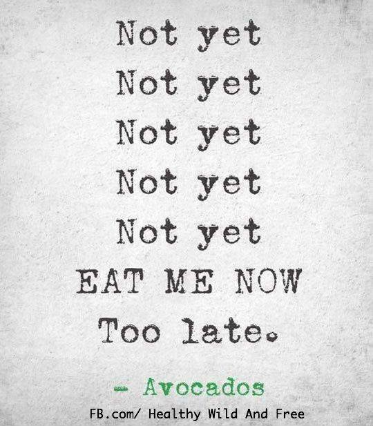 avocado too late