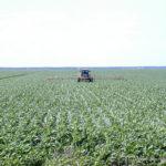 SoilScience.info