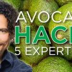 Avocado-Hacks