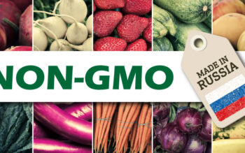 After Banning GMO's, Russia Now Intends to Become The World's Biggest Exporter of Non-GMO Food