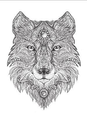 HD wallpapers deer coloring pages printable free