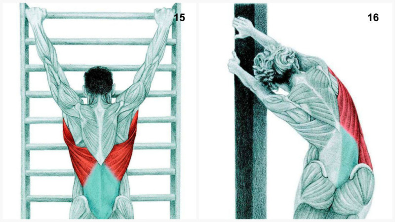 15. Lat Stretch With Spinal Traction : To stretch the latissimus dorsi ...