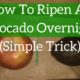 How To Ripen An Avocado Overnight