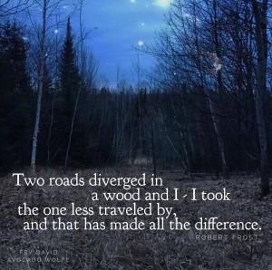 RoadLessTraveled