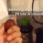 blending-avocado-pic