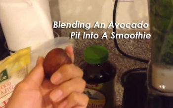 DON'T TRASH AVOCADO SEEDS: They're An Antioxidant-Filled Superfood