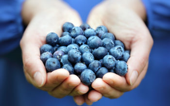 Superfoods: 5 Best Bites for Your Buck
