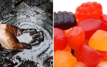 BEWARE: Top 5 Potentially Cancer-Causing Children's Snacks Made From Petroleum-Based Products