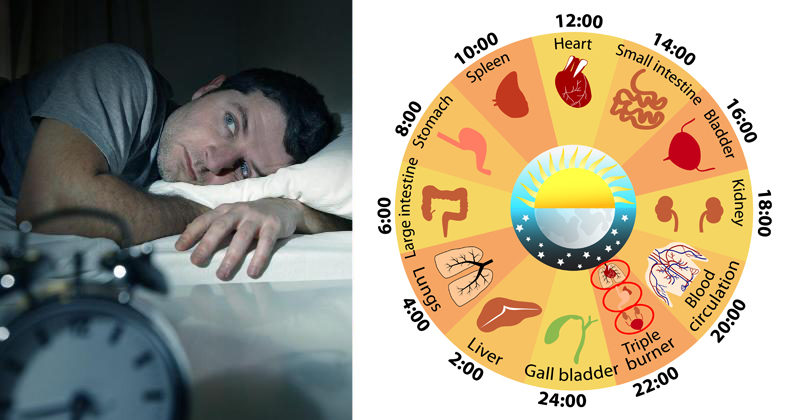 body clock FI02