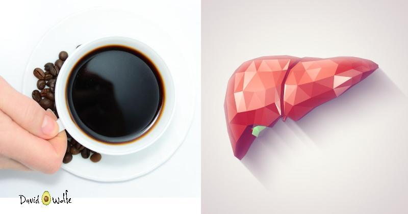 coffee liver FI