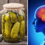 fermented food brain
