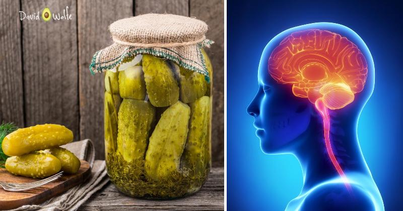 fermented food brain