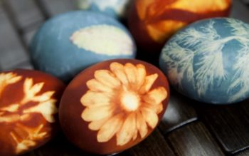 When You See How These Eggs are Dyed, You Will Be Amazed!