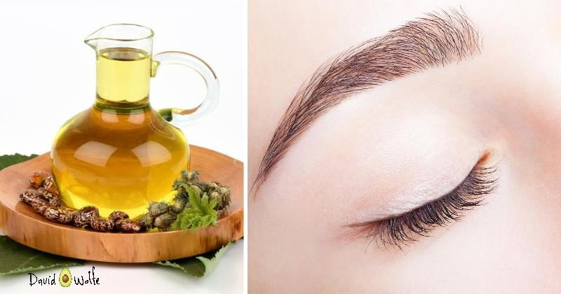 This Oil Is Perfect For Thicker Healthier Eyebrows Davidwolfe