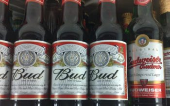 6 Beers You Should Stop Drinking Today for Disturbing Reasons!