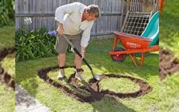 This Dad Digs a Funny Shape in the Backyard. What it Becomes is AWESOME!