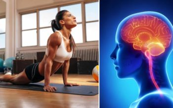 These 5 Exercises Have an Interesting Effect on the Brain!