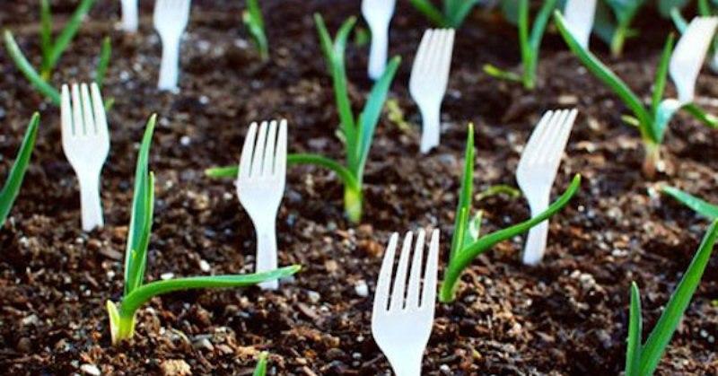 fork garden