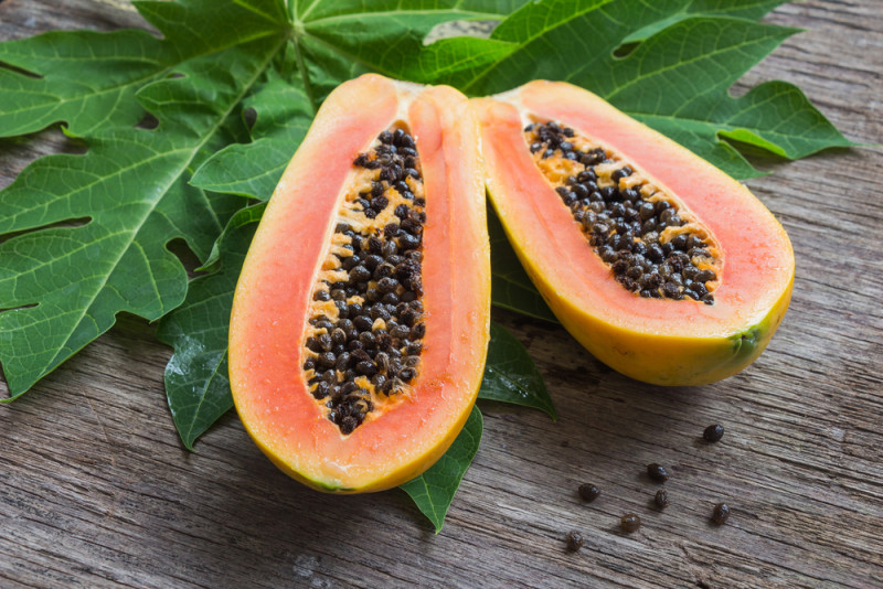 papaya pesticide-induced autism
