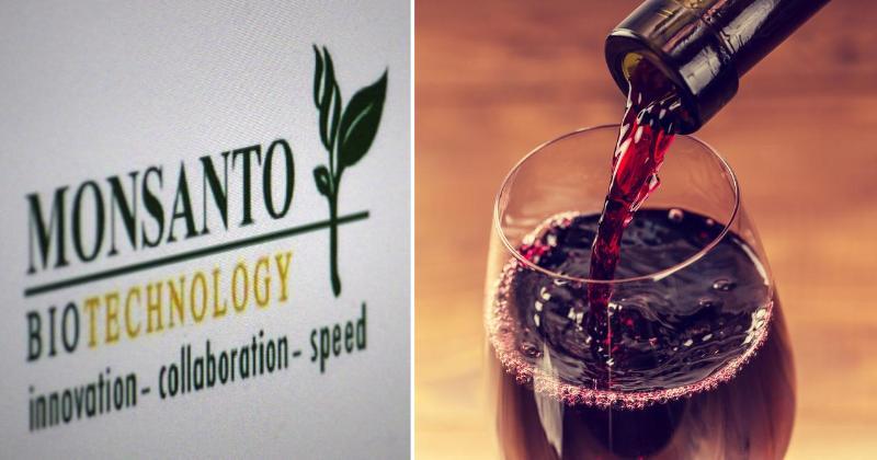 pesticide wine FI