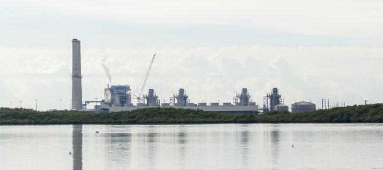 The Turkey Point Nuclear Facility