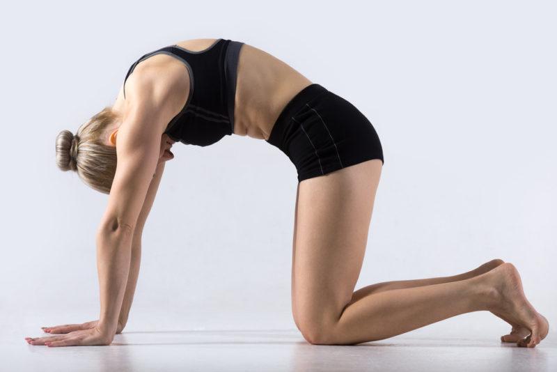 cat pose yoga poses flush stress