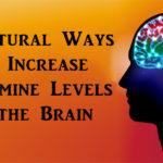 dopamine brain FI