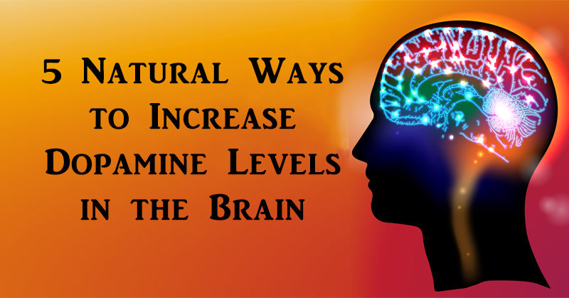5 natural ways to increase dopamine levels in the brain davidwolfe com