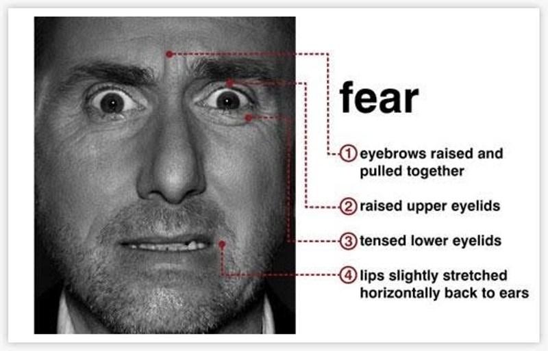 fear-microexpression