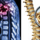 spinal cancer alkiline FI