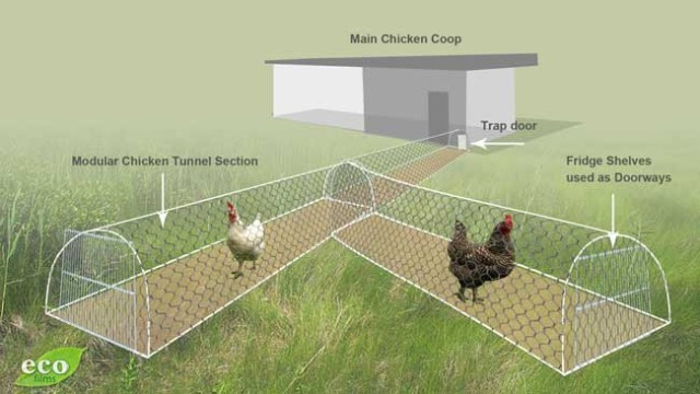Moveable-Chicken-Tunnel-16-640x360