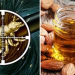 head lice remedies FI