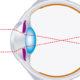 eyesight FI