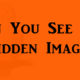 hidden image introverts FI