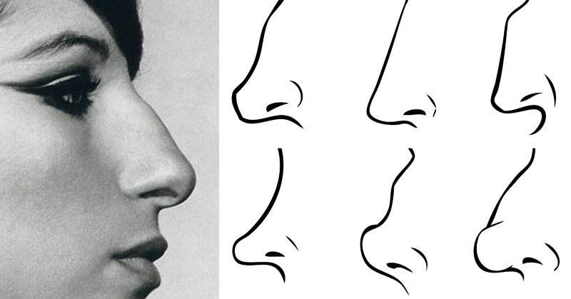 nose personality FI