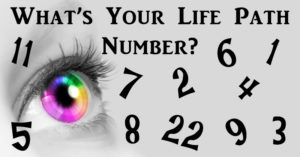 life path number FI