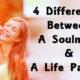 soulmate life partner FI