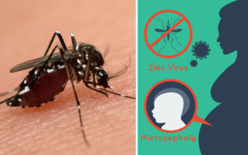 4 Signs You've Been Infected With Zika