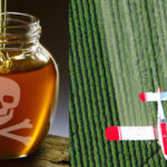 honey-glyphosate-fi