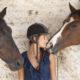 horses communicate FI