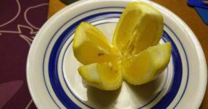 lemon-bed-fi