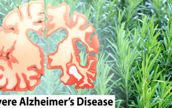 Scientists Discover Rosemary Fights Alzheimer's Disease!