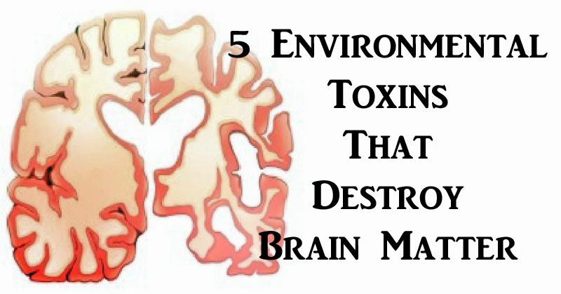 toxins brain FI